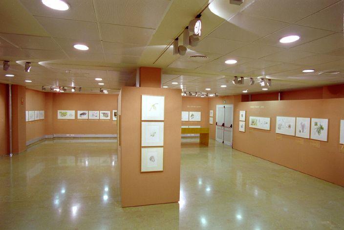 exposición jardín botánico Valencia